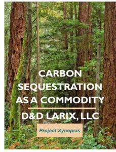 Carbon as a Commodity